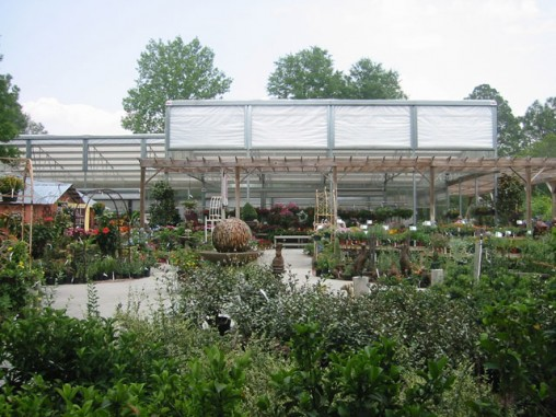 Plants Le S Greenhouse Best 25 Plant Nursery Ideas On Pinterest Local A Owner Wants To Make Thenurseries